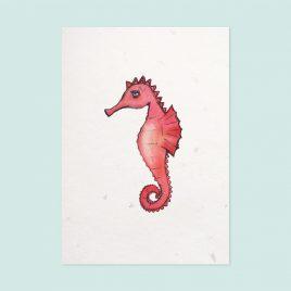 Sea horse coral